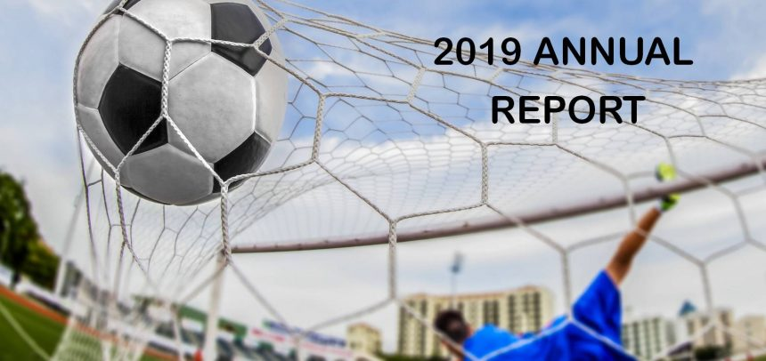 Annual Report for 2019